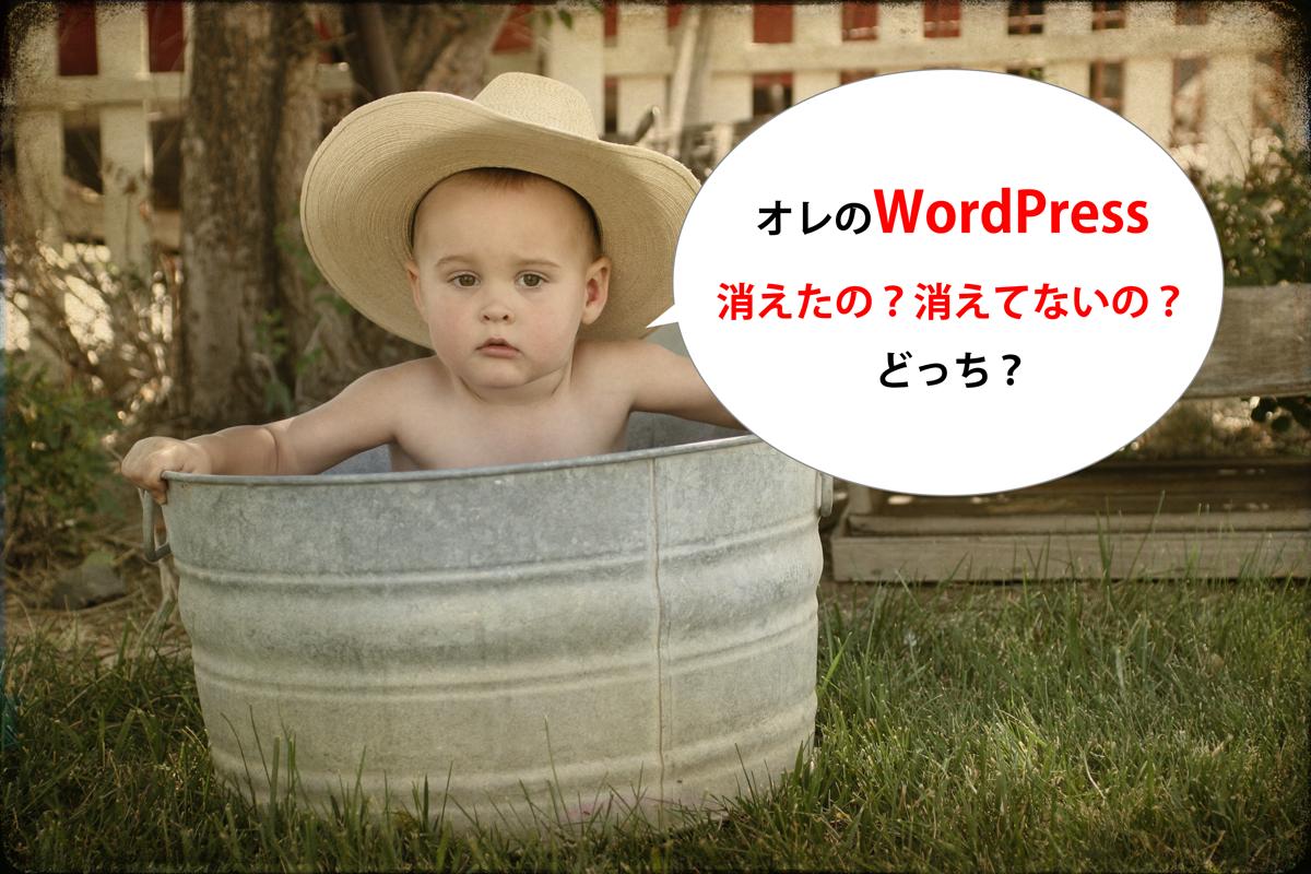 大事なデータを死守!WordPressのバックアップ手順まとめ(Xサーバー編)!